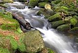 Bergbach im Bayerischen Wald