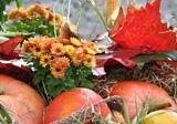 Blumen und Früchte zum Erntedankfest